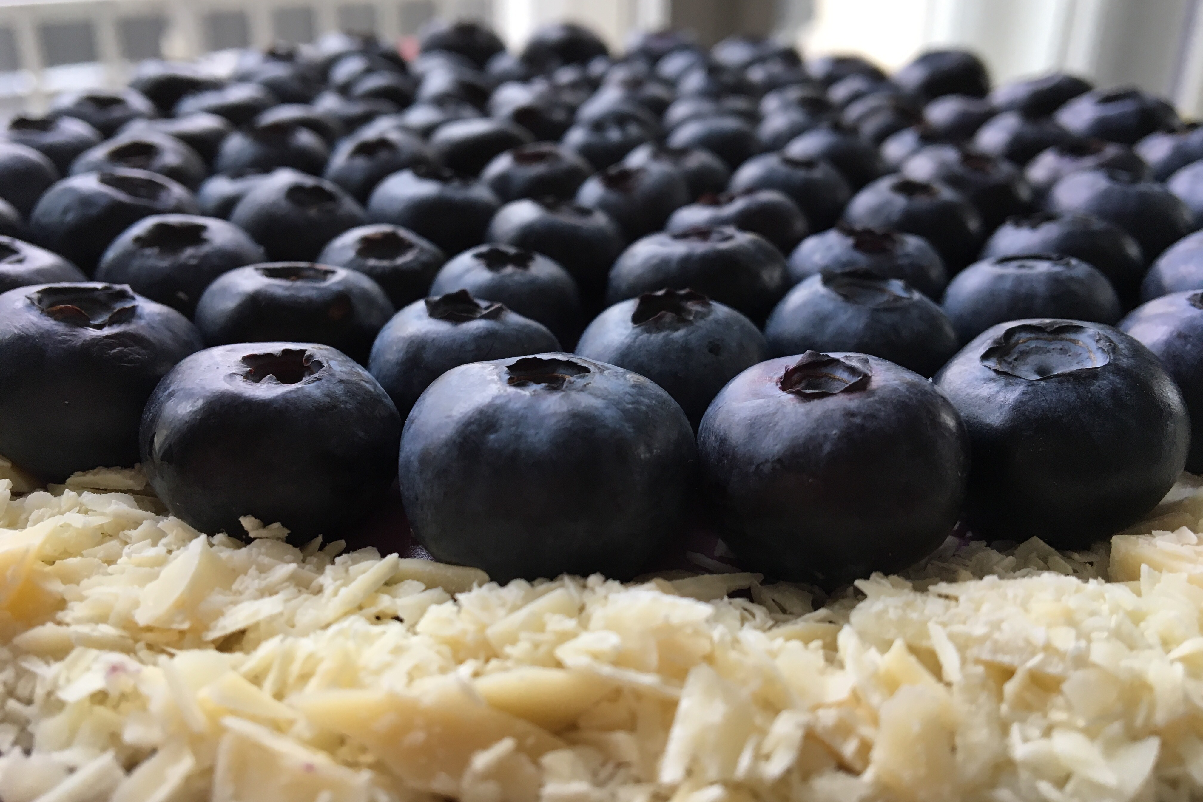Blåbærmousse kage
