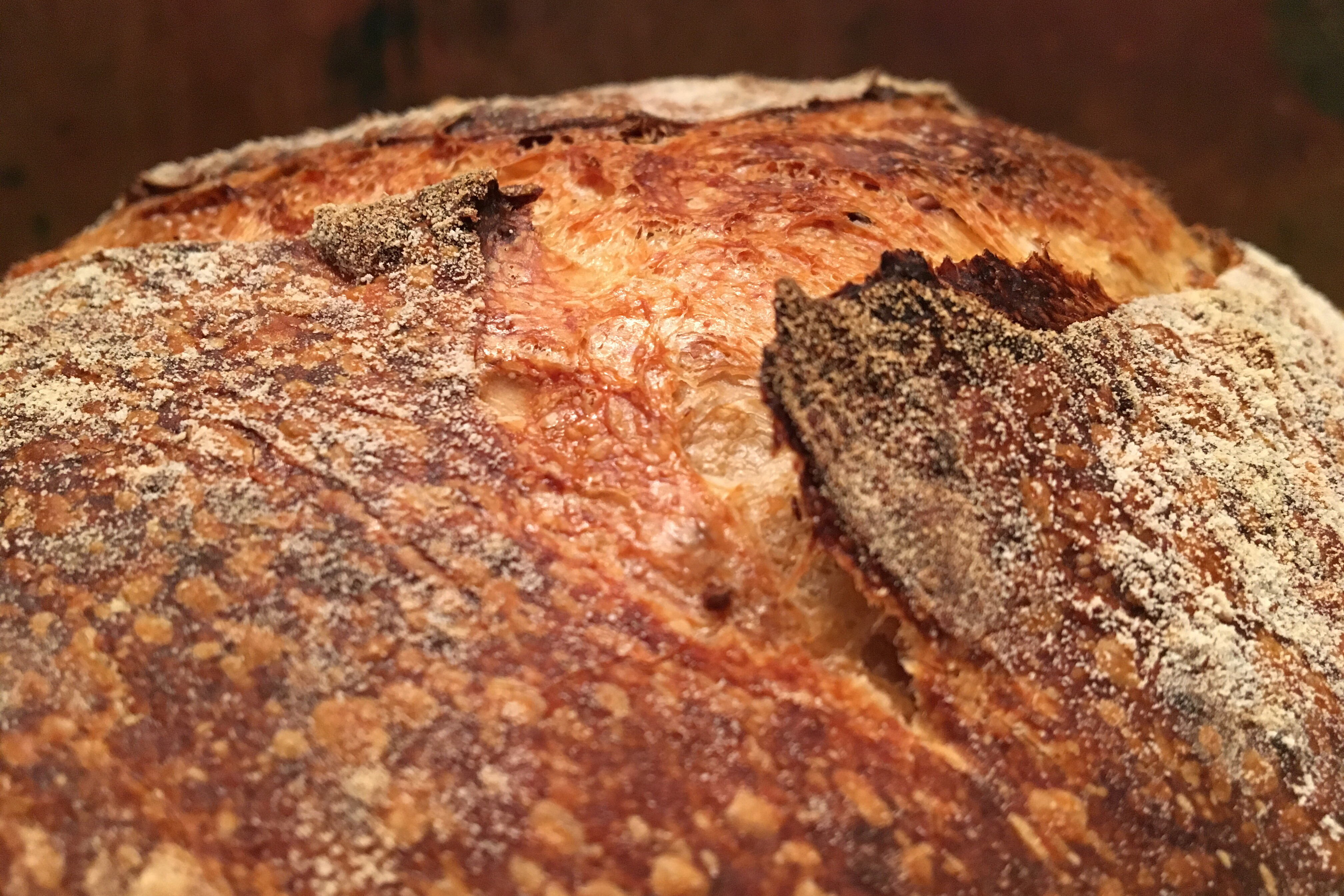 Surdejsbrød med chiafrø