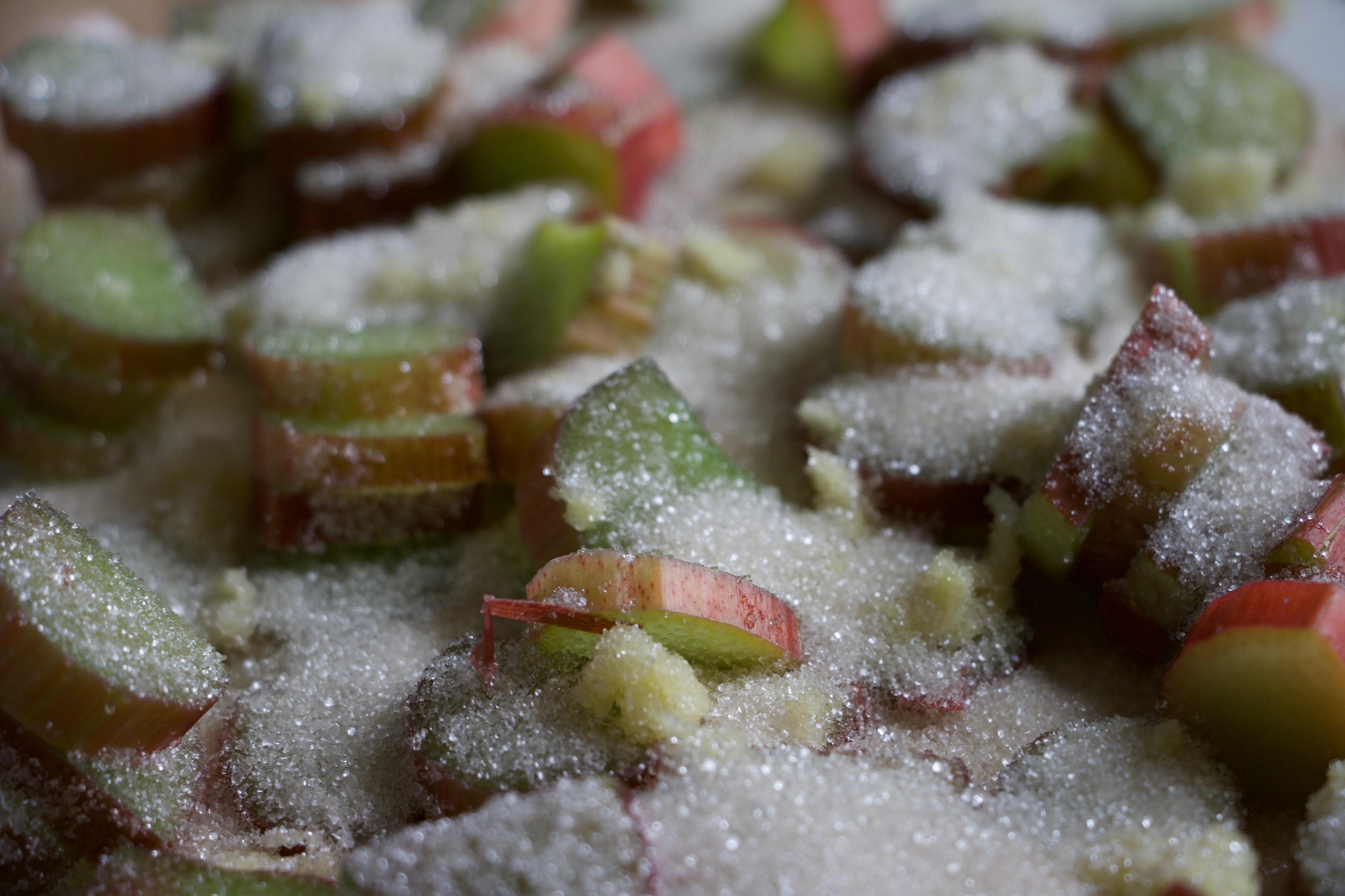 Ingefærmuffins med rabarberkompot