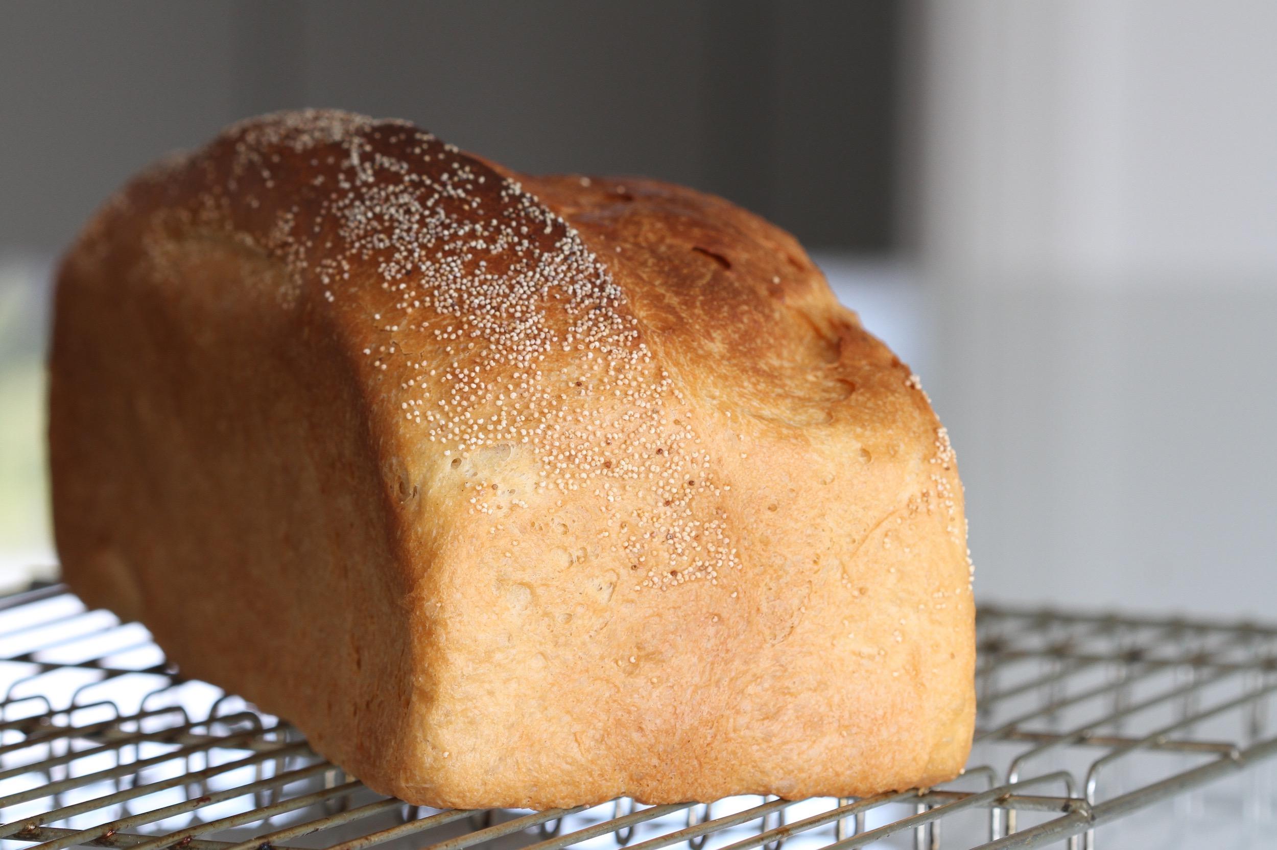 Yoghurtbrød med durummel og birkes – en ny yndling