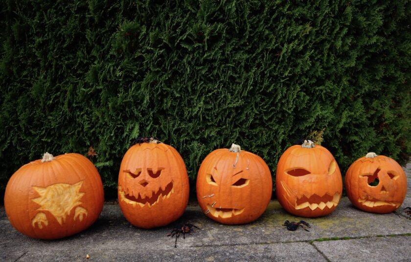 Græskarmænd - græskarhoved - græskar - Halloween Bagvrk.dk