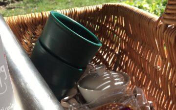 Karantænedagbog 2-14 picnic