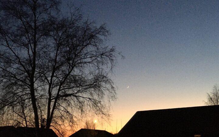 Karantænedagbog 4:14 solnedgang i marts Bagvrk.dk