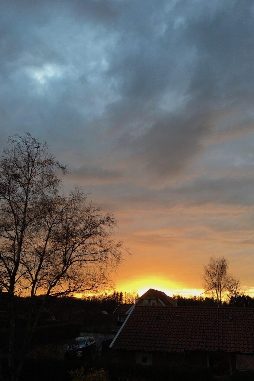 Solnedgang over vænget Bagvrk.dk