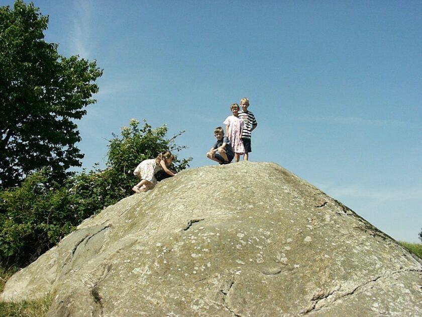 Damestenen 2006 Danmarks største sten Bagvrk.dk